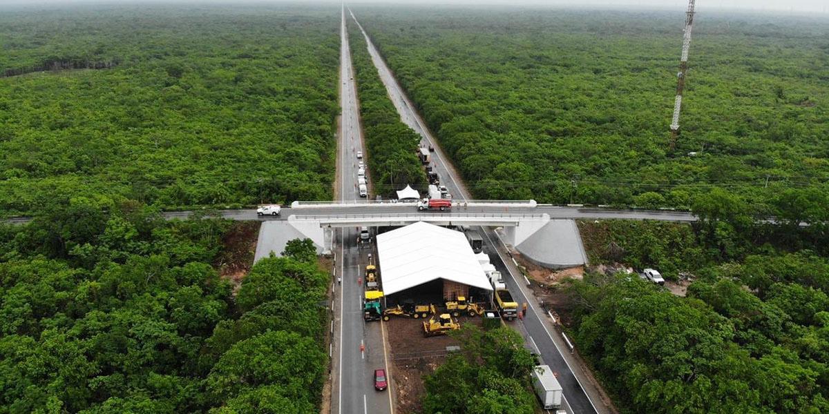 <br>Tren Maya transportará 5.5 millones de toneladas de productos agropecuarios